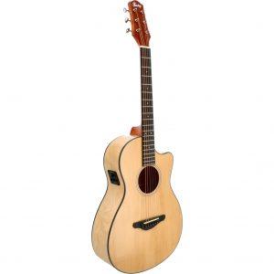 Fazley W120-CPNT-P ColourTune elektrisch-akoestische gitaar met cutaway naturel met gigbag